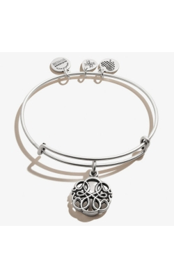 Alex and Ani Path of Life product image