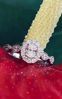 Oval Halo Engagement Ring product image