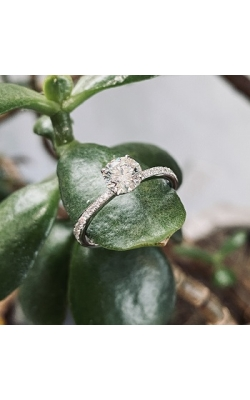 18k White Gold Hearts on Fire Engagement Ring product image
